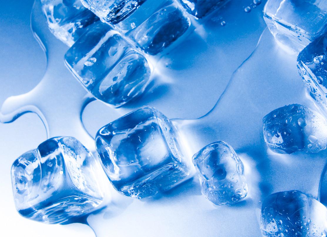 W3 Max Wms Ice Cold Warehouse W3logistics Ag
